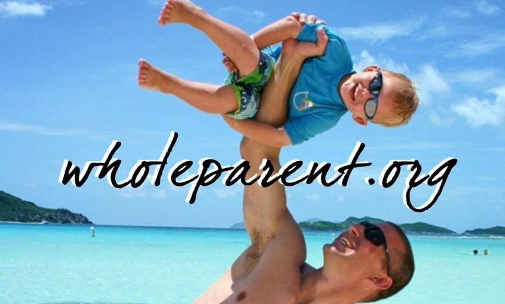 Read more about the article Loss, Sadness, and Indifference: Struggles of a Single Dad